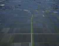 圃場整備された水田と整備前の水田
