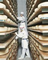 雪印チーズ工場 大樹工場発酵室