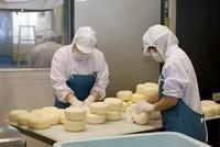 チーズ工場(別海町乳業興社)
