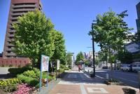 帯広駅前からのびる平原通り