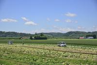 音更町の農村風景