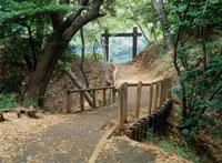 小机城土橋と空堀