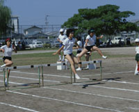 体育祭 25097014156| 写真素材・ストックフォト・画像・イラスト素材|アマナイメージズ