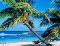 ハーフムーンビーチ 25131006168| 写真素材・ストックフォト・画像・イラスト素材|アマナイメージズ