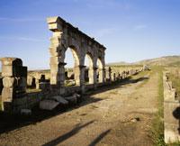 ローマ遺跡のヴォルビリス