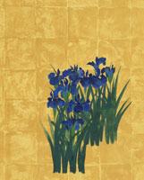 日本画風イラストの燕子花