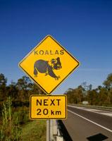 コアラ注意の標識 25158014233  写真素材・ストックフォト・画像・イラスト素材 アマナイメージズ