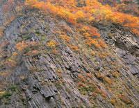 秋の清津峡  11月  新潟県 25184019359| 写真素材・ストックフォト・画像・イラスト素材|アマナイメージズ