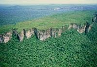 アマゾン上流の岩山 チリビケテ国立公園 25196000484| 写真素材・ストックフォト・画像・イラスト素材|アマナイメージズ
