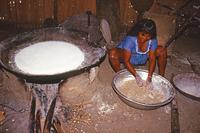 苦ユカ(アクの強い種類のユカ)で焼き上げパンのカサベをつくるカラパナ族の娘