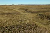 インカ時代から続く,堀を畑のまわりにめぐらすワルワル農法