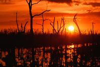 カリブの海水と淡水が混ざり合う湖の夕焼け