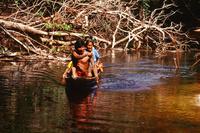 丸木舟で細い川を移動する先住民