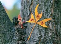 木工人形・落葉遊び 動物の面 25210008435| 写真素材・ストックフォト・画像・イラスト素材|アマナイメージズ
