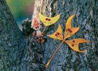 木工人形・落葉遊び 動物の面 25210008436| 写真素材・ストックフォト・画像・イラスト素材|アマナイメージズ
