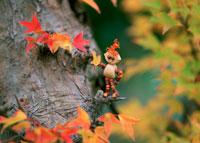 木工人形・色づく楓 25210008439| 写真素材・ストックフォト・画像・イラスト素材|アマナイメージズ