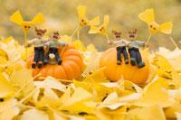 木工人形 カボチャに座り銀杏の落葉をもつ家族 25210008586| 写真素材・ストックフォト・画像・イラスト素材|アマナイメージズ