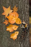木工人形 落葉遊びをする親子 25210008591| 写真素材・ストックフォト・画像・イラスト素材|アマナイメージズ