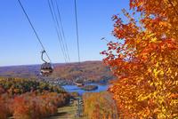 秋のローレンシャン高原 25210010980| 写真素材・ストックフォト・画像・イラスト素材|アマナイメージズ