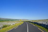 道路と標識