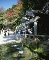 清水寺音羽の清水 25222004945  写真素材・ストックフォト・画像・イラスト素材 アマナイメージズ