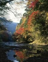 秋の養老渓谷 25222009006  写真素材・ストックフォト・画像・イラスト素材 アマナイメージズ