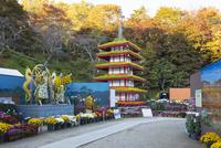 二本松の菊人形展 25222015183  写真素材・ストックフォト・画像・イラスト素材 アマナイメージズ