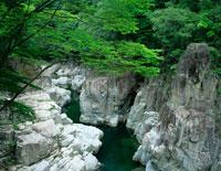 新緑の表匹見峡