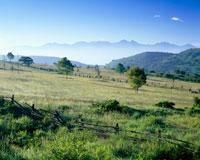 朝の牧場と八ヶ岳 霧ヶ峰