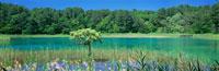 五色沼の弁天沼