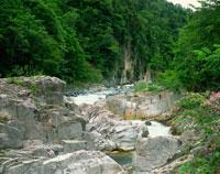 新緑の屏風岩と伊南川
