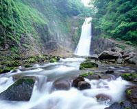 新緑の秋保大滝