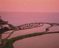 白米千枚田と日本海の夕景