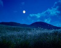 ススキと月 曽爾高原