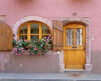 花と窓 25242006660  写真素材・ストックフォト・画像・イラスト素材 アマナイメージズ