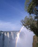 ビクトリア滝と虹