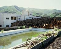 溶岩に埋まる三宅島阿古小学校 25290001114| 写真素材・ストックフォト・画像・イラスト素材|アマナイメージズ