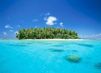 アルノ環礁の島