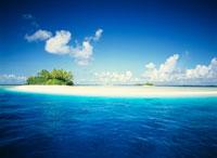 ミリ環礁の島
