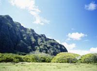 オアフ島風景