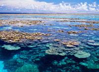 マジュロ環礁サンゴ礁 25356000843| 写真素材・ストックフォト・画像・イラスト素材|アマナイメージズ