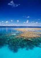 マジュロ環礁 サンゴ礁 25356000845| 写真素材・ストックフォト・画像・イラスト素材|アマナイメージズ