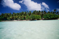 アルノ環礁 リーフ 25356001619| 写真素材・ストックフォト・画像・イラスト素材|アマナイメージズ