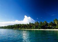 マジュロ環礁 25356001708| 写真素材・ストックフォト・画像・イラスト素材|アマナイメージズ