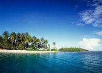 マジュロ環礁 25356001711| 写真素材・ストックフォト・画像・イラスト素材|アマナイメージズ