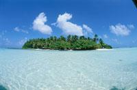 アルノ環礁リーフ 11月 ミクロネシア 25356001720| 写真素材・ストックフォト・画像・イラスト素材|アマナイメージズ