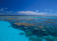 マジュロ環礁サンゴ礁 マーシャル諸島共和国