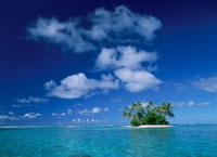 マジュロ環礁チビヤシの島 マーシャル諸島共和国