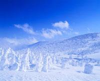 樹氷 蔵王 2月 山形県