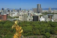 大阪城から京橋方面 25388014609| 写真素材・ストックフォト・画像・イラスト素材|アマナイメージズ